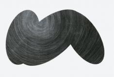 owock-kamienia2.jpg