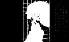Kamuflaż – Kod 3, 2008, serigrafia, 70 x 100